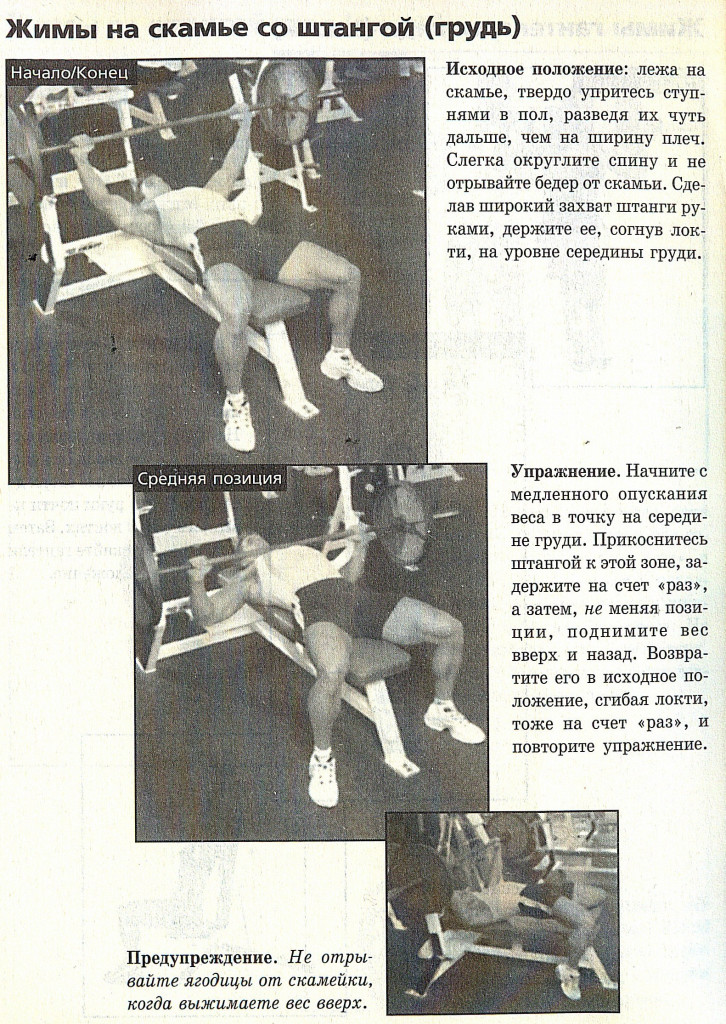 Развитие грудных мышц-1