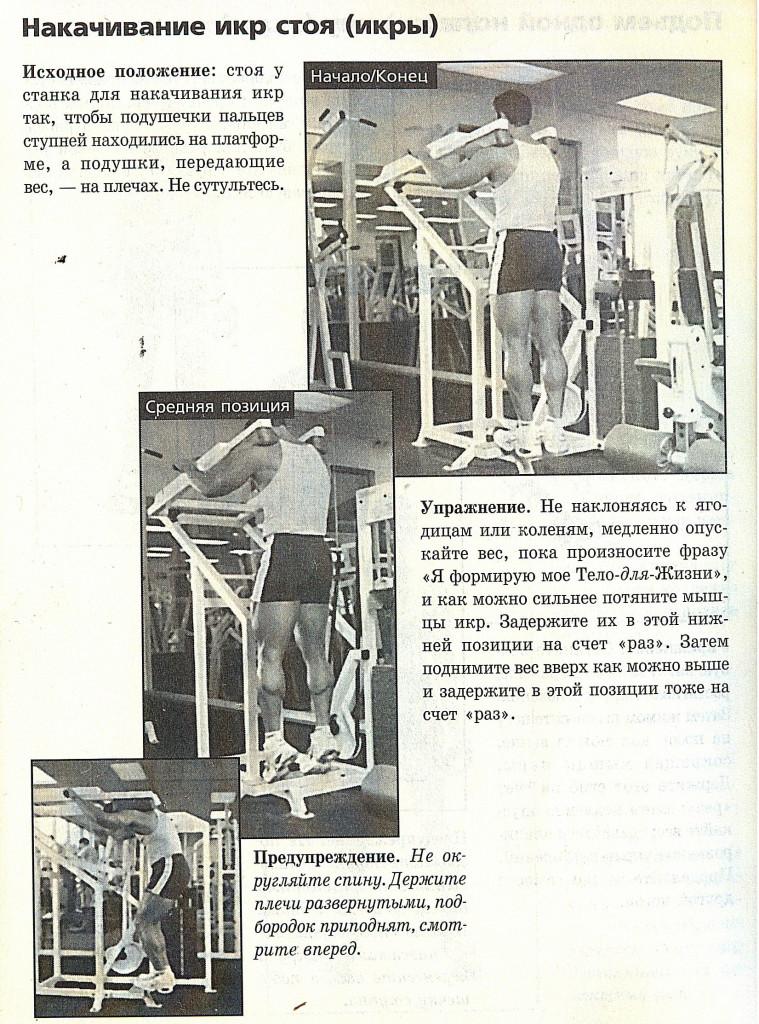 Икроножные мышцы -1