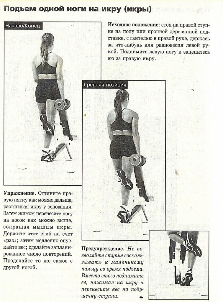 Икроножные мышцы - 2